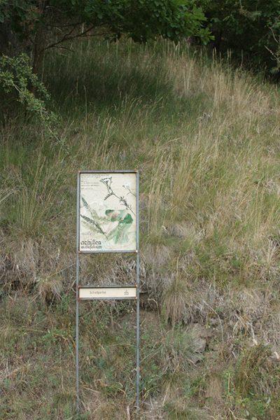 Schauensteinweg – Achillea millefolium